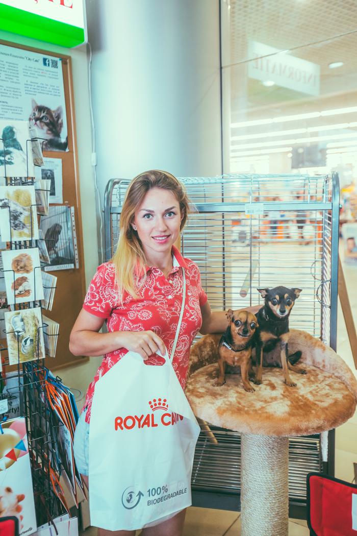креативный зоологический магазин в Молдове – Planeta Zoo K9